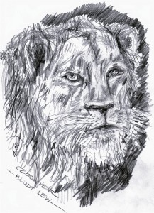 Młody lew
